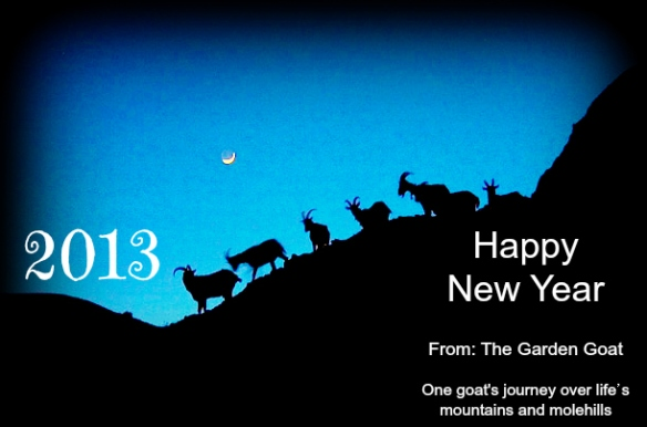 Happy New Year 2013 from the Garden Goat