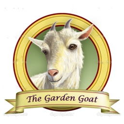 "Labeled  ""The Garden Goat"""